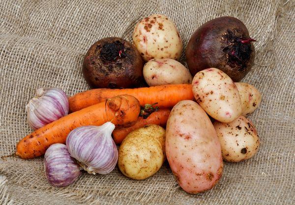 Овощи которые можно хранить вместе зимой