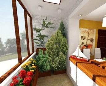 Вечнозеленые растения для обустройства балконного помещения